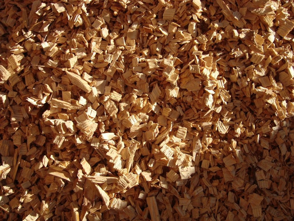 Timber and lumber export offers pine wood chips