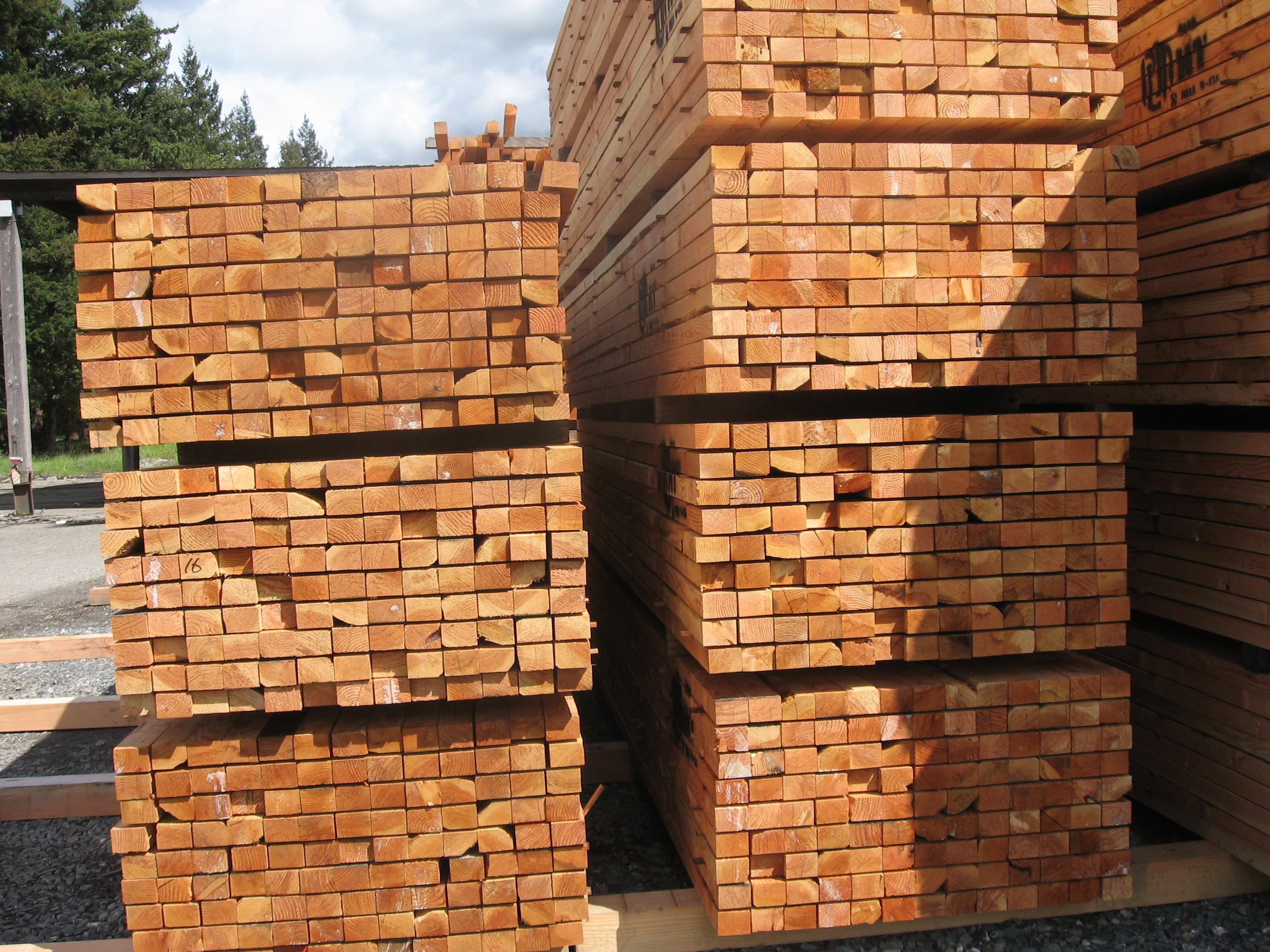 Timber And Lumber Export Offers Douglas Fir Wood For