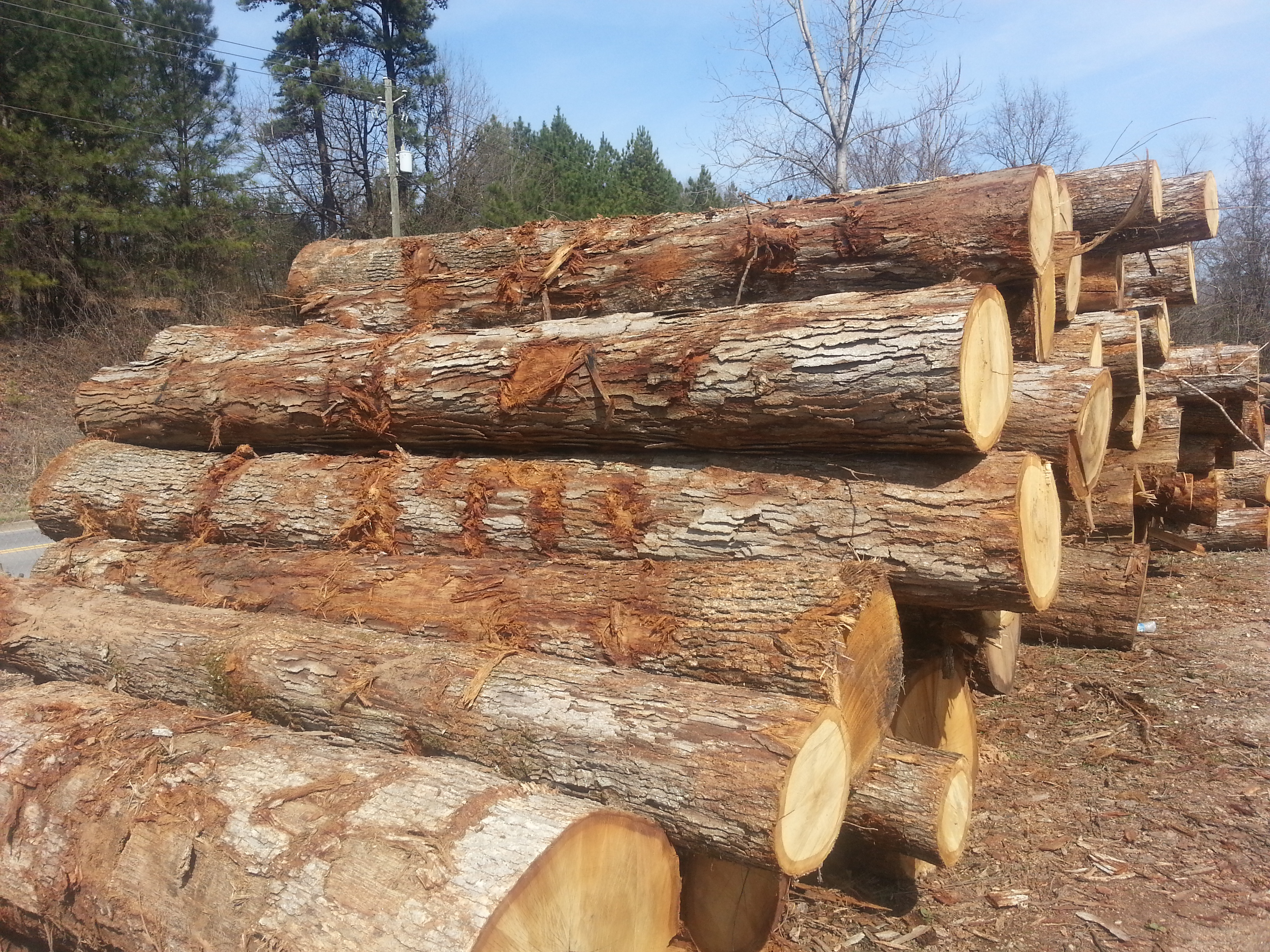 Sitka Spruce Lumber Suppliers Timber And Lumber Export